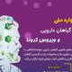 برگزاری جشنواره ملی گیاهان دارویی و ویروس کرونا