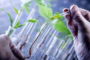 قانون حفاظت و بهرهبرداری از منابع ژنتیکی کشور