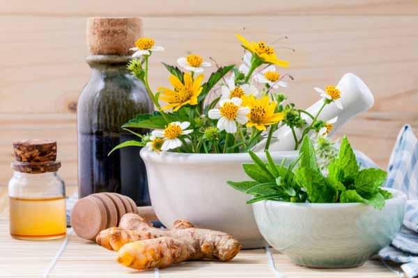 قرارداد تدوین طرح کسب و کار توسعه محصولات دارویی سنتی و طبیعی